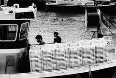 Les hommes du port.