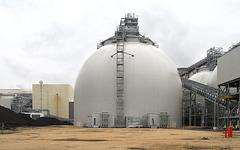 Biomass inside