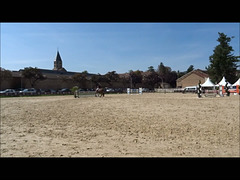 Saut d'obstacles / Show jumping