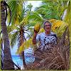 Catalina :  consiglio di non appisolarsi sotto una palma da cocco !