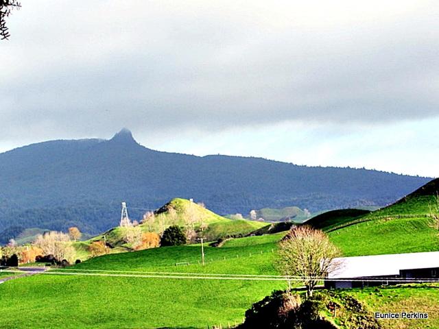Whakamaru View.