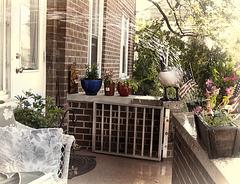 Watering my garden goose