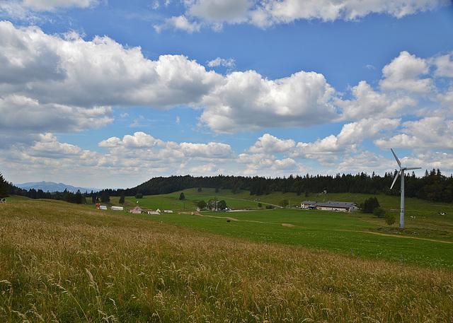 Bestes Wanderwetter auf dem oberen Grenchenberg