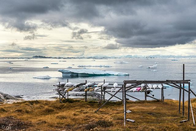 Qajaqs at Ilulissat