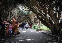 couleurs ethniques : Alger