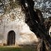 Sant Pau y lo Vilar