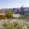 View from Mount Scopus  to the old city, in the back the Church of Dormition - PIP