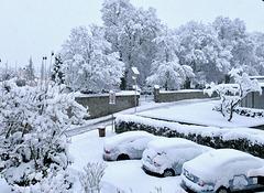 Weiße Winterwelt