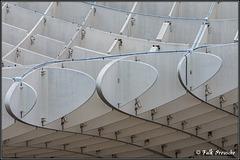 Dach des Parasol
