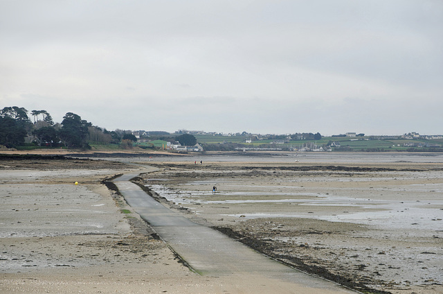 Marée basse entre l'île Callot et le continent