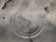 Windblown Arcs in the Sand