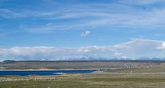 US 395 Crowley Lake (#0463)