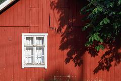 35/50 - In Fjærland