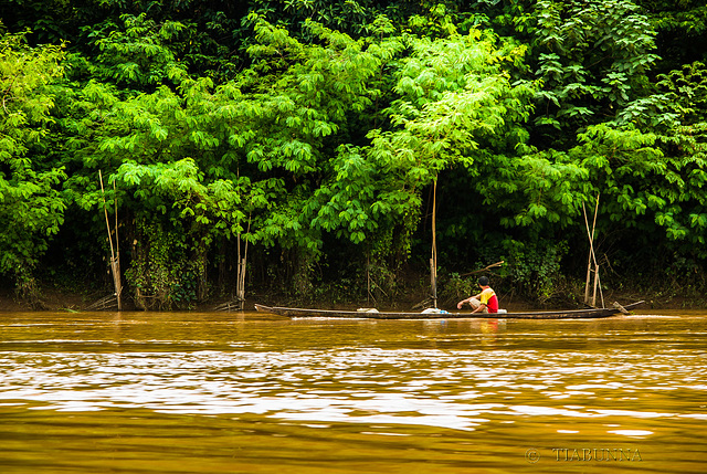 Fishing the Mekong
