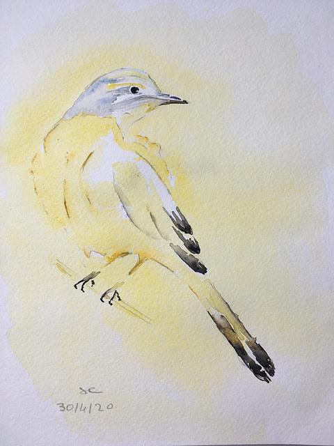 "Aquarelle :"" L'oiseau jaune "" version 4"