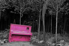 Piano ivre ... perdu dans les bois