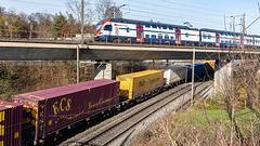 201117 Othmarsingen RABe511 conteneurs 3