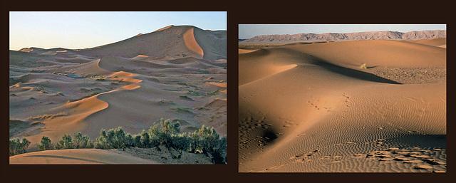 Maroc - La grande dune de Merzouga