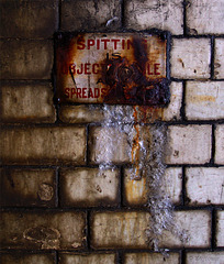 spitting is objectionable and spreads disease