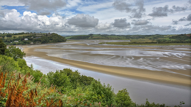The River Taf Estuary at Laugharne (Plus x 1 PiP)
