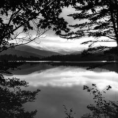 window to the lake