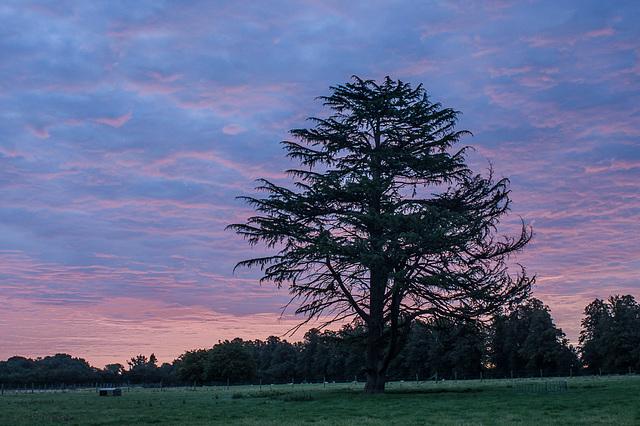 Sept 4 sunrise