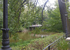 362 Parkidylle am Carolasee im Großen Garten Dresden