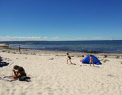 Hochsommer - an der Ostsee bei Heidkate