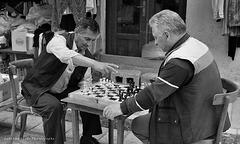 chess players at Vlora (Albania)