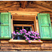 Livigno - Window