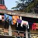 Shimla- Washing Day