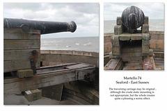 Martello 74's gun Seaford 15 9 2013