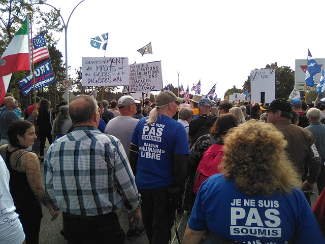 Soumission ou liberté / Submission or freedom  (Québec)