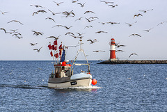 zurück vom Fischfang