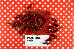 PANTONE 1797 RED HOT CHILI PEPPERS