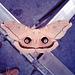 Polyphemus moth on court street