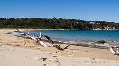 Quiriga Beach