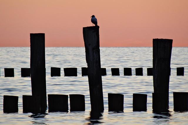 Abend am Meer (3)