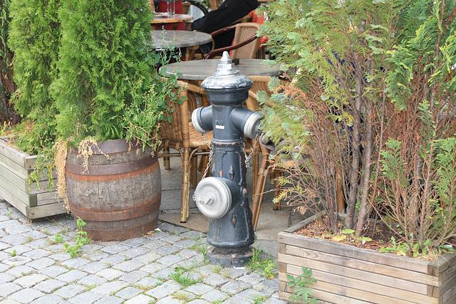 Lüneburg, Hydrant