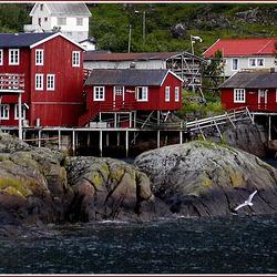 A - Lofoten Norvege