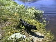 Missy in Hemsedal (3)