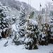 20150131 6764VRAw [D~RI] Schnee, Rinteln