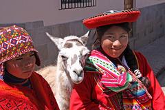 Photobombing llama (Explored)