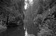 Sachsen Rocks VII