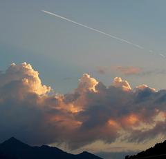 Un avion sur la photo / A plane on the picture