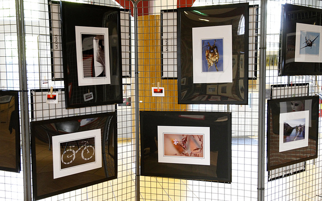 HFF expo photos