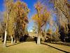 Malin Park