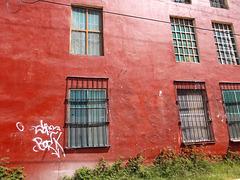Fenêtres et graffiti immaculé
