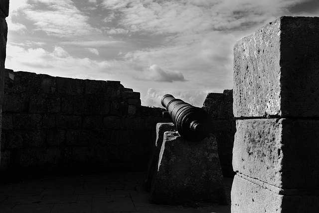 Canon at the Conqueror's Castle in Caen