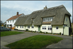 thatched cottage by the green